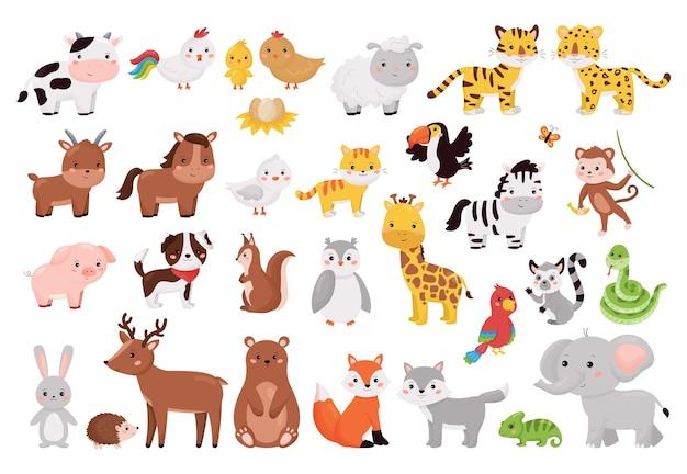 Animais de desenho animado e coleção de pássaros