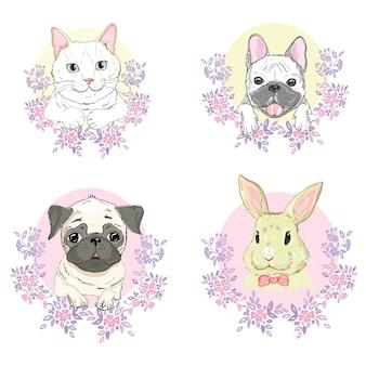 Animais de estimação cara, cachorro, gato e coelho