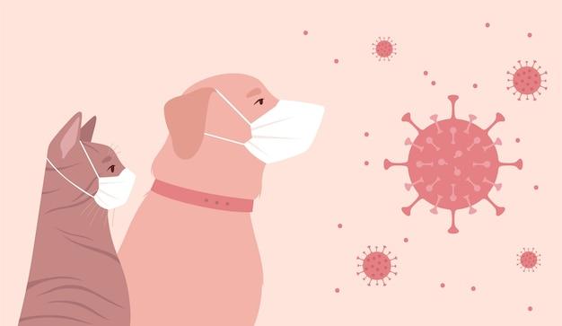 Animais de estimação colocados em quarentena devido ao coronavírus.
