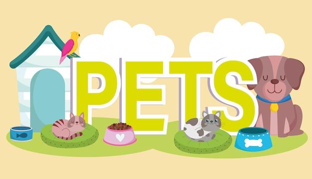 Animais de estimação com cachorros, gato, papagaio, tigelas e ilustração vetorial de desenho animado