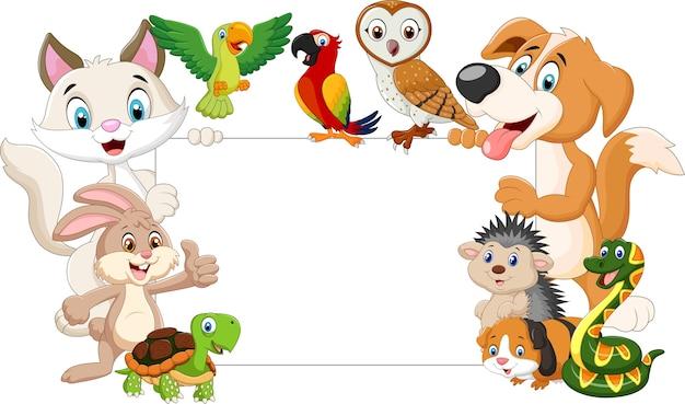 Animais de estimação dos desenhos animados segurando cartaz em branco