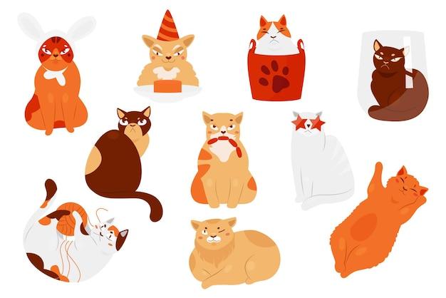 Animais de estimação e gatinhos fofos em diferentes poses com um personagem gatinho gordo brincando de dormir