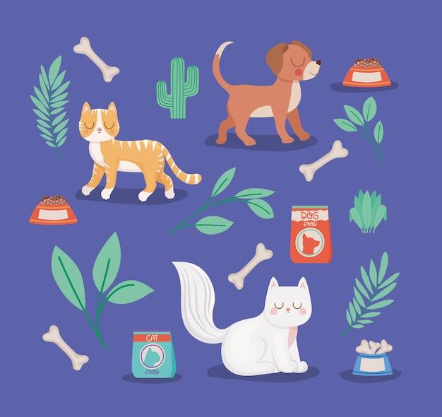 Animais de estimação e itens de animais de estimação
