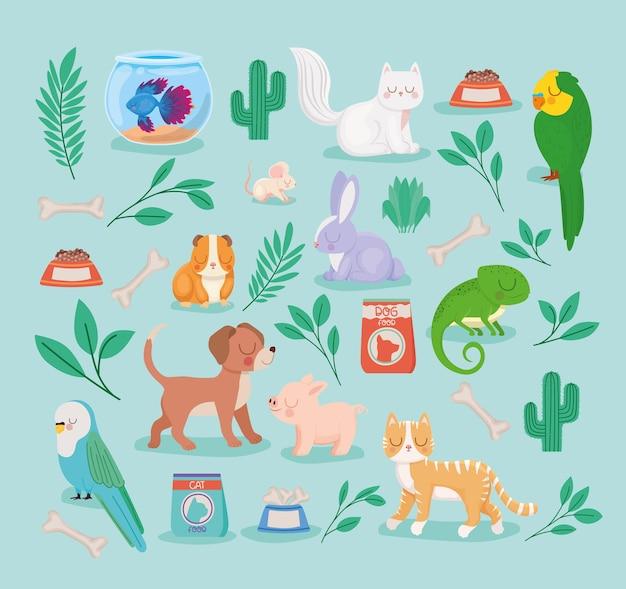 Animais de estimação e plantas