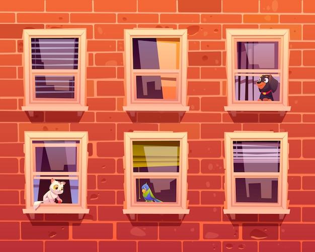 Animais de estimação nas janelas, gato, cachorro e papagaio no peitoril da janela