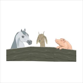 Animais de fazenda porco cavalo e cabra