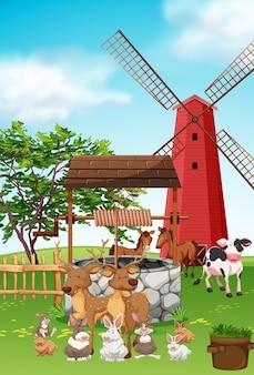 Animais de fazenda que vivem na fazenda