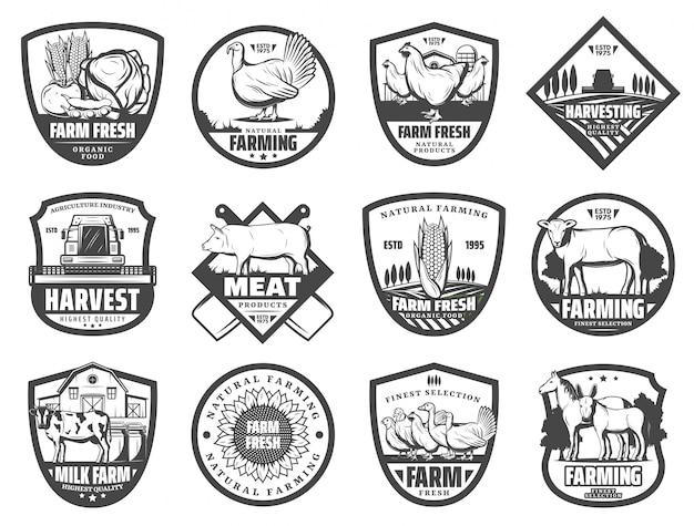 Animais de fazenda, tratores, celeiro, campo e aves