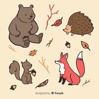 Animais de floresta de outono de mão desenhada