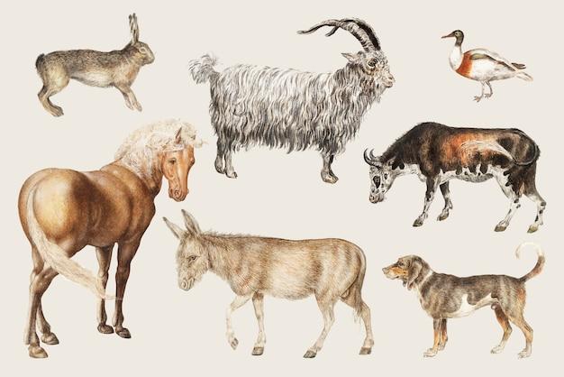 Animais de pecuária rural