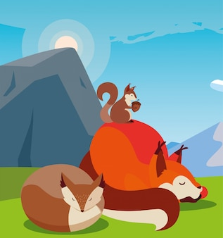 Animais de raposa e esquilo na natureza
