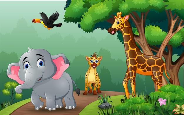 Animais de uma espécie diferente caminhando pela floresta