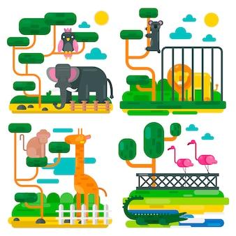 Animais de zoológico e aves cartoon ilustração vetorial