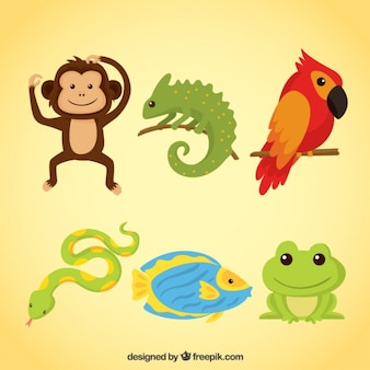 Animais divertidos e répteis