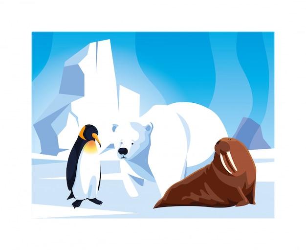Animais do ártico no pólo norte