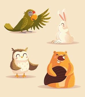 Animais dos desenhos animados papagaio coruja coelho e ilustração vetorial de ícones de castor