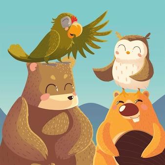 Animais dos desenhos animados trazem castor papagaio e ilustração da vida selvagem da coruja