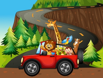 Animais e carro