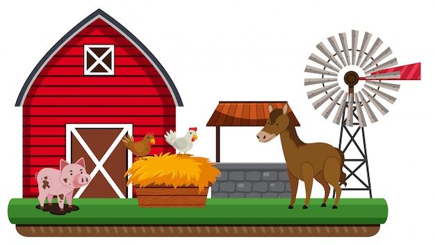 Animais e paisagem da fazenda