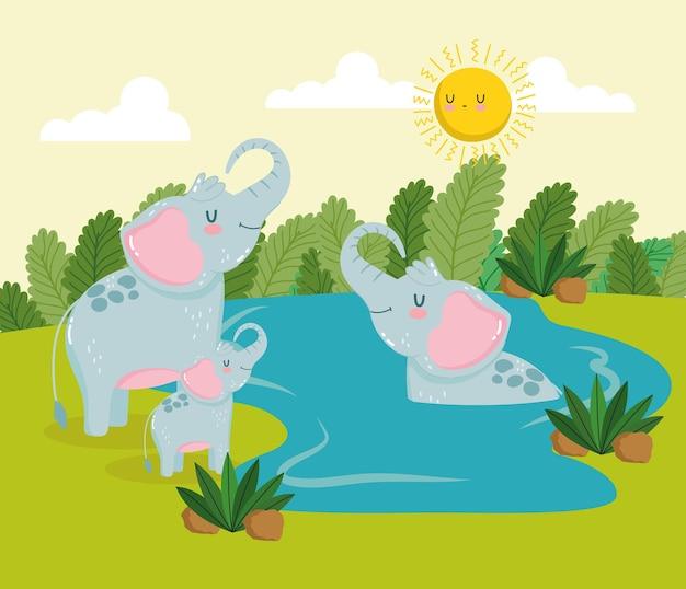Animais, elefantes, desenhos animados, água da selva