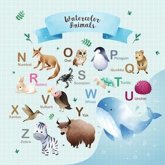 Animais em aquarela com base no alfabeto n a z