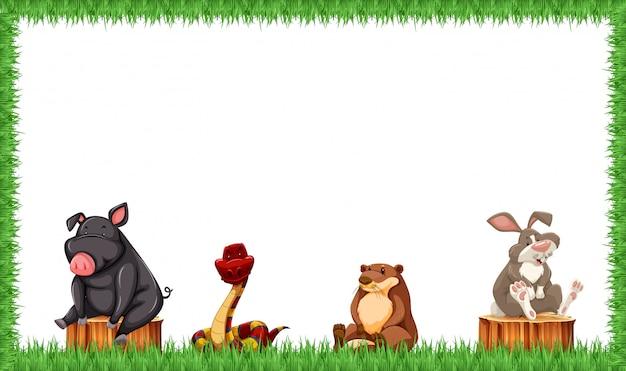 Animais em quadro de grama