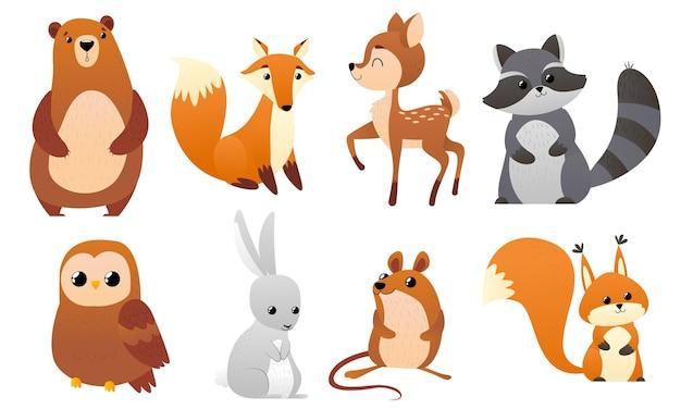 Animais engraçados da floresta