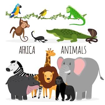 Animais exóticos da áfrica dos desenhos animados