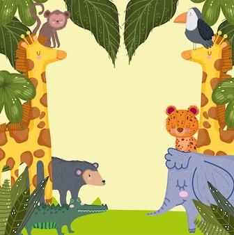 Animais exóticos do safari
