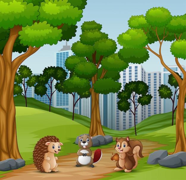 Animais felizes brincando na floresta