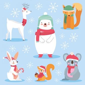 Animais fofos com roupas de natal.