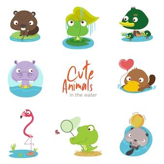Animais fofos de água