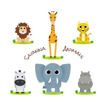 Animais fofos de savana