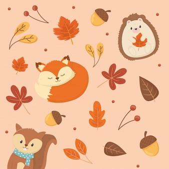 Animais fofos e elementos de outono