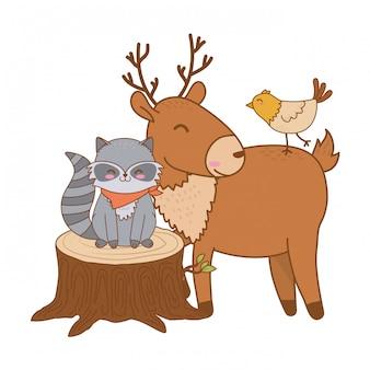 Animais fofos em caracteres de floresta de caminhão