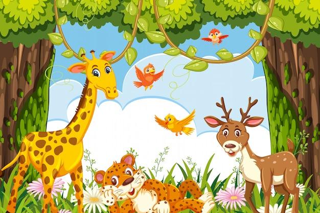 Animais fofos na cena da selva