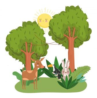 Animais fofos na floresta