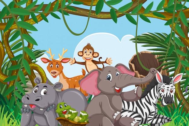 Animais fofos na selva
