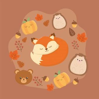 Animais fofos na temporada de outono