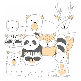 Animais fofos