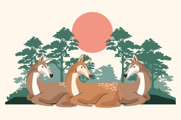 Animais fulvos selvagens na cena da selva