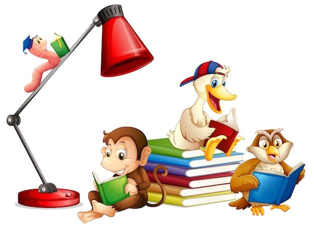 Animais lendo livro isolado