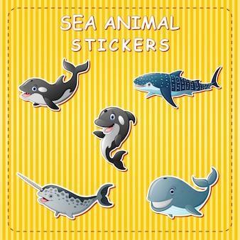 Animais marinhos bonito dos desenhos animados na etiqueta