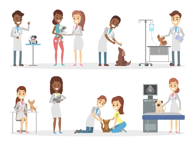 Animais no veterinário.