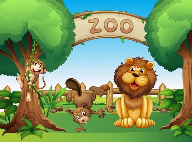 Animais no zoológico