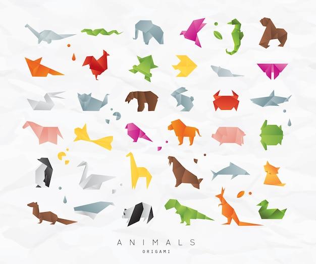 Animais origami conjunto cor