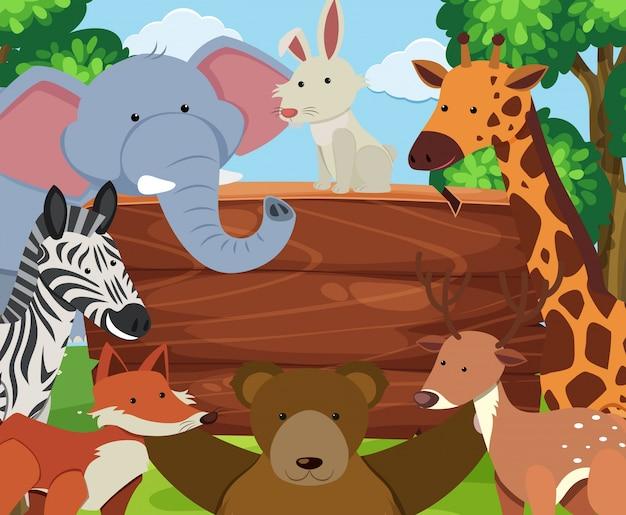 Animais selvagens ao redor da placa de madeira