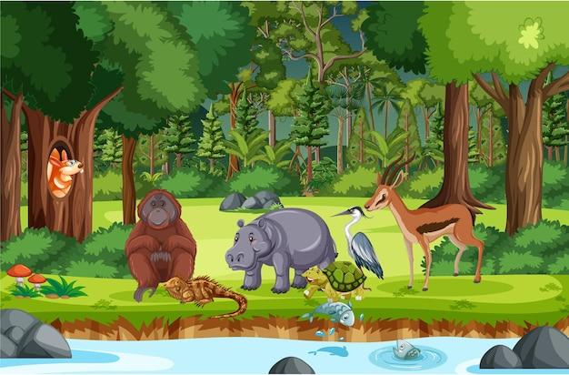 Animais selvagens com riacho fluindo pela cena da floresta