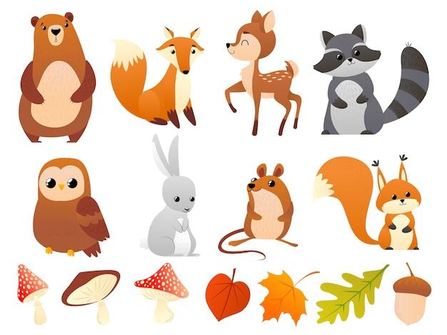 Animais selvagens da floresta