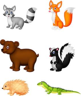 Animais selvagens dos desenhos animados
